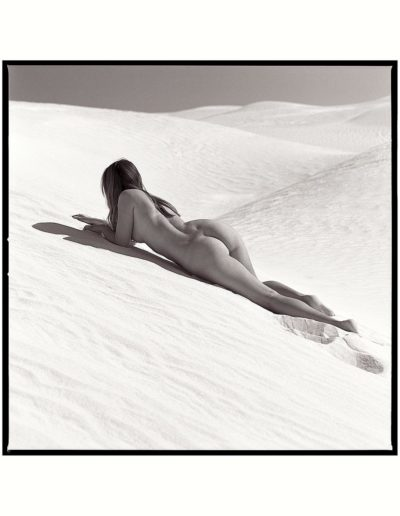 Grey-and-dunes-9